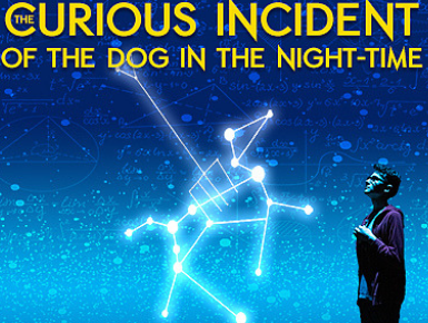 NAHS Theatre Presents The Curious Incident of the Dog in the Night-Time